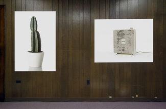 GRIN at SPRING/BREAK Art Show 2016, installation view
