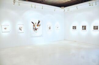 Greg 'Craola' Simkins - Where Am I, installation view