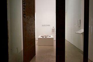 Ronen Raz | Silver Pharm, installation view