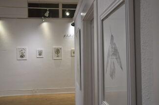 Petals & Paws: An Exhibition by Emiko Woods & Marissa Quinn, installation view