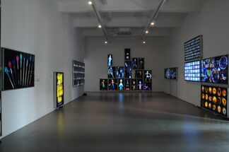 The Swimmers, installation view