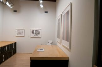 Recent Editions: Jay Heikes, Do Ho Suh & Mungo Thomson, installation view