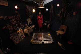 Luciana Kaplun: Gilda, installation view
