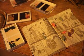 The Solo Exhibition of Nobuyoshi Araki, installation view