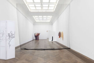 """An exhibition by Nick Mauss: """"Bizarre Silks, Private Imaginings and Narrative Facts, etc."""", installation view"""