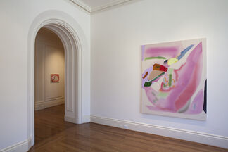 Yuh-Shioh Wong: Calling Across the Watermelon Field For You, installation view