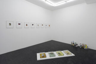 Marie Jeschke: Can't Remember Always Always, installation view