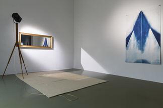 Peter Miller   Aktinität, installation view