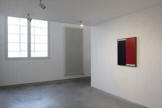 Johnny Abrahams 'Making Flowers Alive', installation view