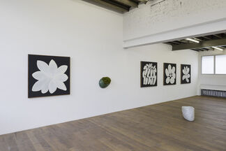 OFF ROAD, installation view
