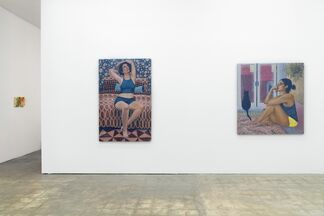 Lady Parts, installation view