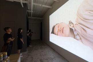 Brothers: Tadasu Takamine Solo Exhibition, installation view