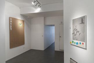 Eloy Arribas - Frugivore Bats, installation view