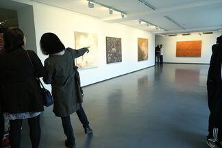 WANG YABIN - Guest From Afar, installation view