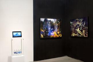De Soto Gallery at Photo L.A. 2019, installation view