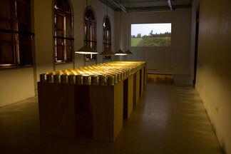 ORO DULCE - Francisca Benitez, installation view