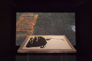 Pan Gongkai and Clifford Ross: Alternate View, installation view