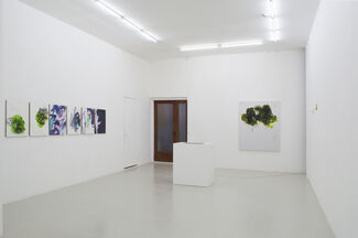 And Alterations - Michael Manning, installation view