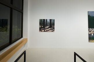 Michael Brophy: Home, installation view