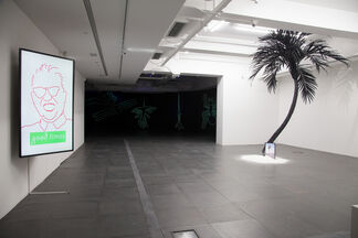 Diary of a Pioneer, installation view