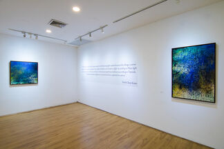 Lights In, installation view