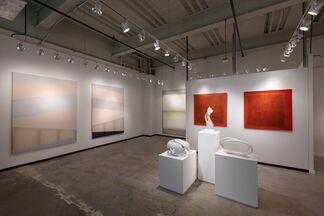 Ronchini at Dallas Art Fair 2017, installation view