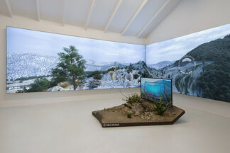 """Timur Si-Qin - """"A Place Like This"""", installation view"""