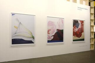 The Ravestijn Gallery at Unseen Photo Fair 2016, installation view