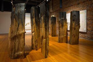Joseph Rossano: EDNA, installation view