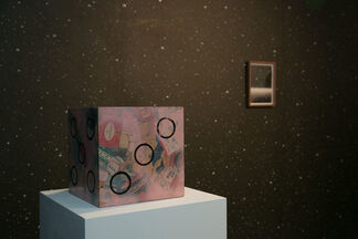 Anatomy of Anxieties, curated by Rowing Projects, installation view