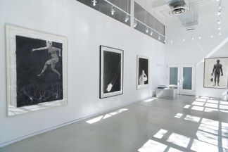 Lesley Dill large scale photographs, installation view