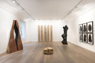 """David Nash: Columns, Peaks and Torso"", installation view"