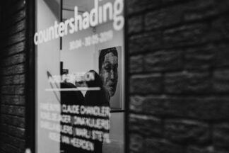 Countershading, installation view