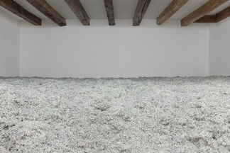 Christodoulos Panayiotou, Two Days After Forever, installation view