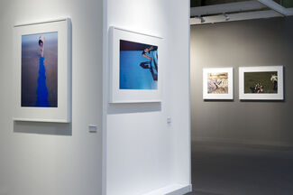 Louise Alexander Gallery at Paris Photo 2017, installation view
