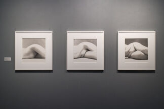 Pace/MacGill Gallery at ADAA The Art Show 2014, installation view