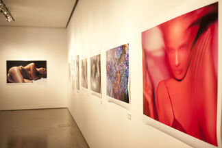 Natural Beauty, installation view