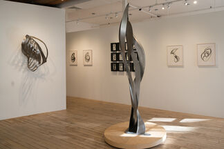 David Cerulli: Recent Sculptures and Drawings, installation view