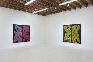 Monique Prieto 'Luster', installation view