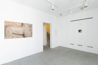Delos, installation view