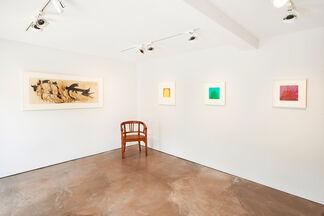Marcia Hafif, Carol Rama, Mario Schifano: Selection from 1958-1981, installation view