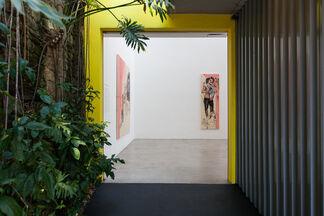 Camila Soato | Nobres Sem Aristocracia: Projeto Vira-Latas nº51, installation view