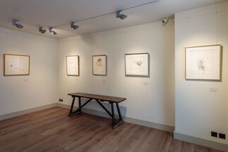 David Hockney, Early Drawings, installation view