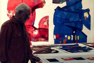 Imposing - Sheldon Berlyn, installation view