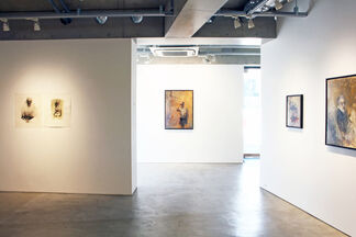 Emerging from the Void, installation view