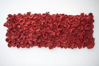 Krajcberg, uma homenagem (a homage), installation view
