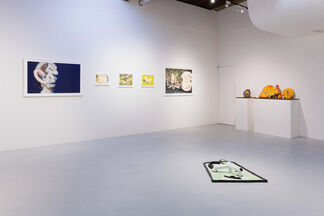 Identity XII - Memorandum on Sublime -curated by Taro Amano-, installation view