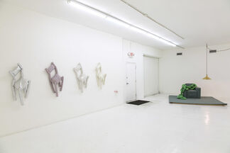 Docile/Domicile/Dandy, installation view