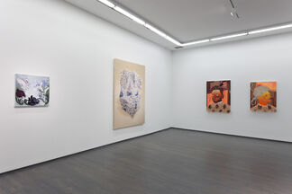 Parallel Lives, installation view