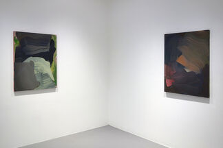 Erin Lawlor: London Fields, installation view